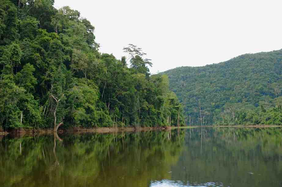 Chiquibul National Park